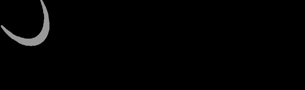 Asplan Viak logo